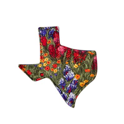 Texas Themed Hot Pads