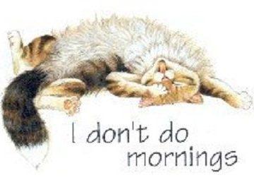 I Don't Do Mornings Cotton T-Shirt